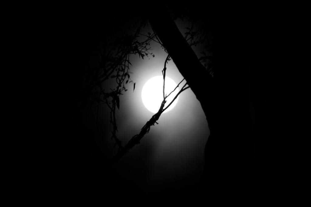 страх от тъмното